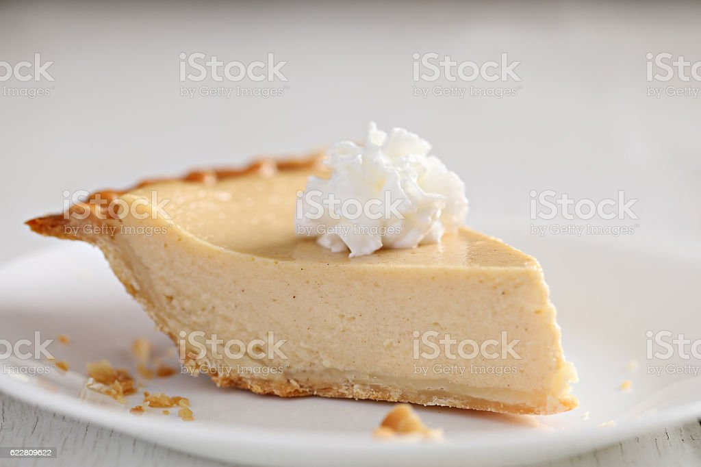 Slice Of Chess Buttermilk Pie stock photo