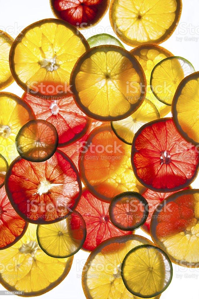 sliced citrus fruits stock photo