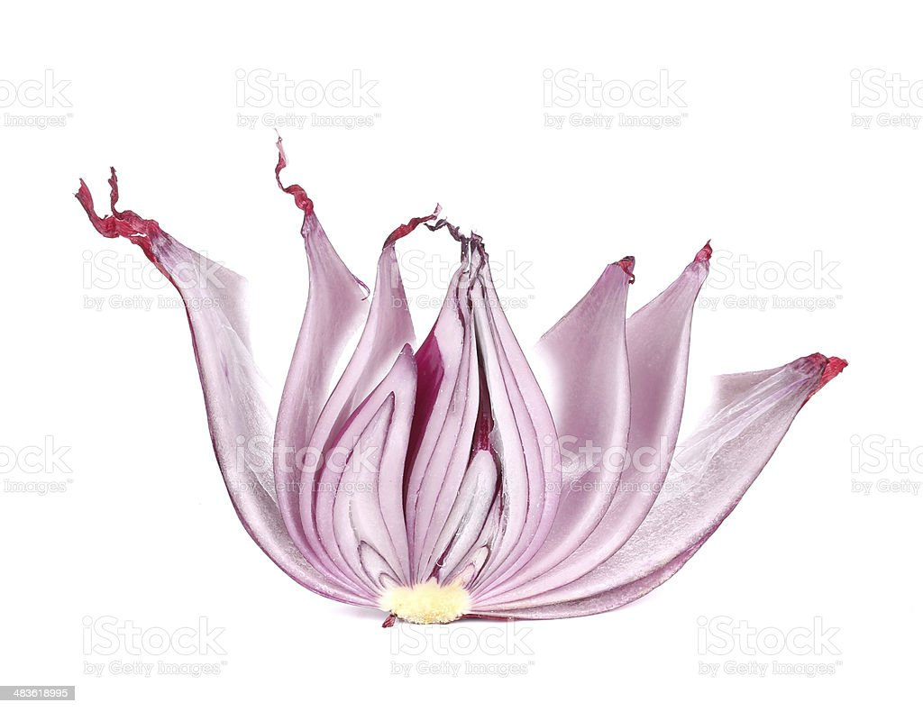 Sliced of red onion. stock photo