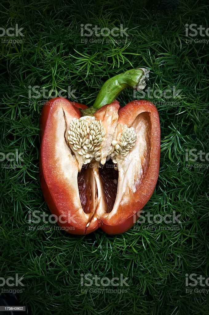 sliced red bell pepper on green grass stock photo