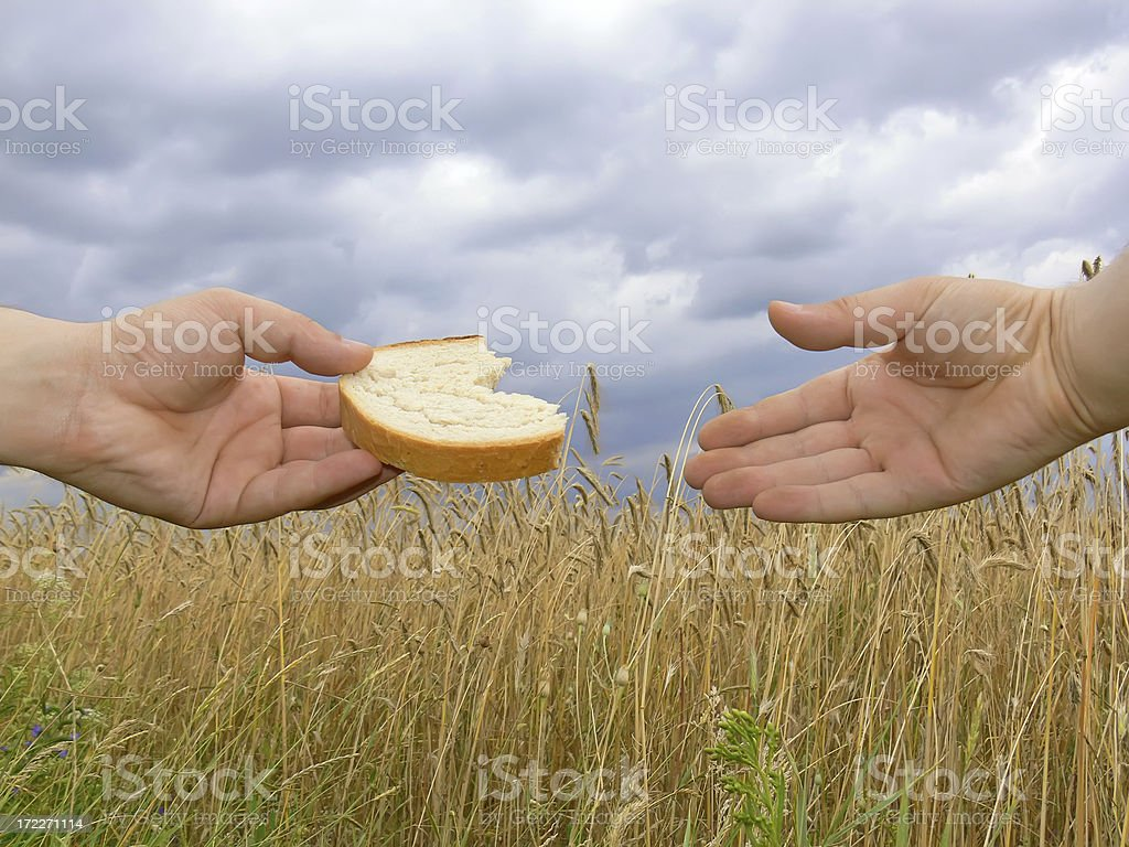 slices of bread and hands stock photo