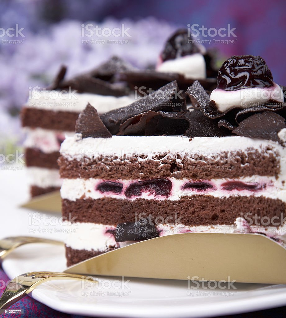 Slices of chocolate cake with white cream royalty-free stock photo
