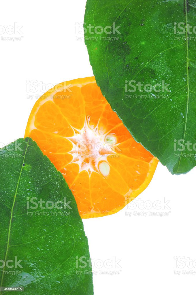 Slices Orange an Leaves isolated on white stock photo