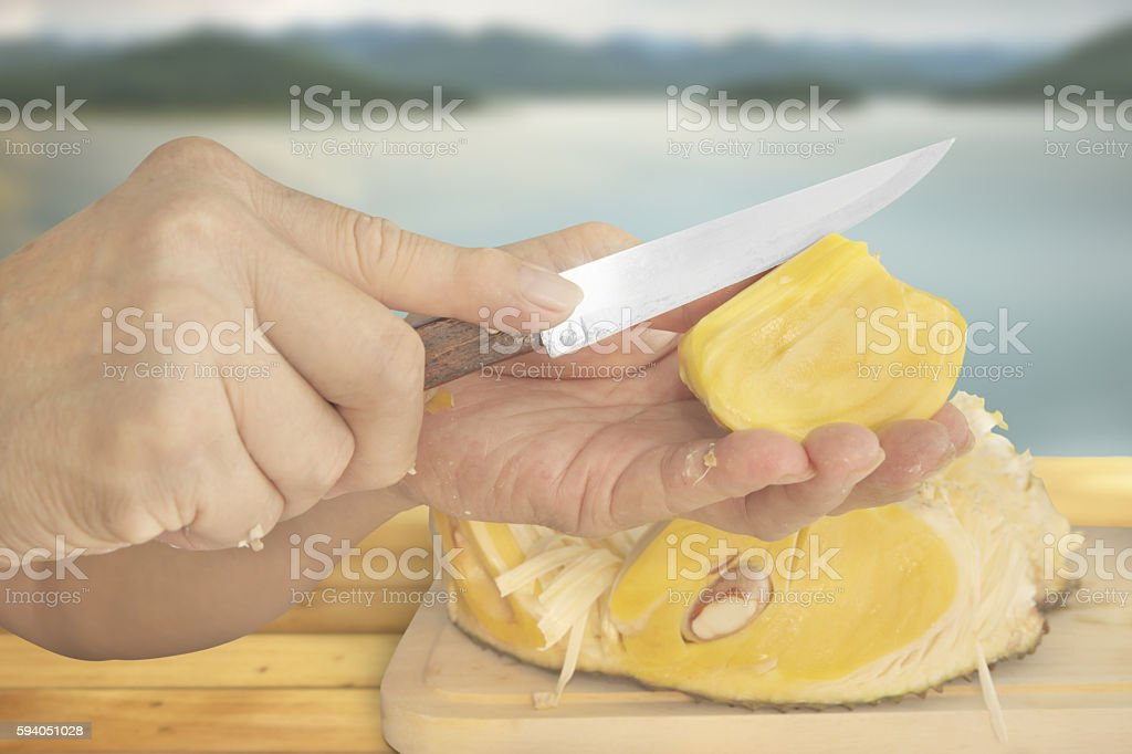 Slicing a piece of Jackfruit stock photo