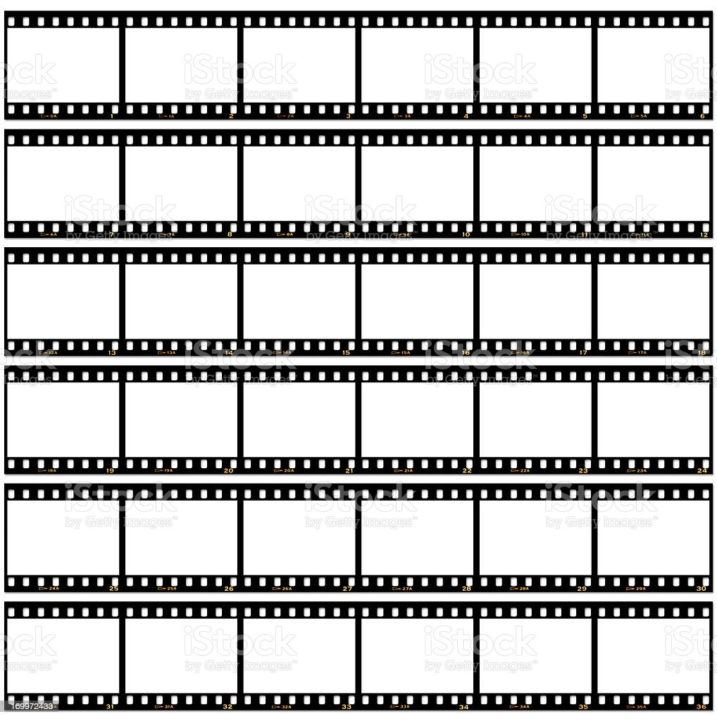 Slide film contact sheet on white royalty-free stock photo