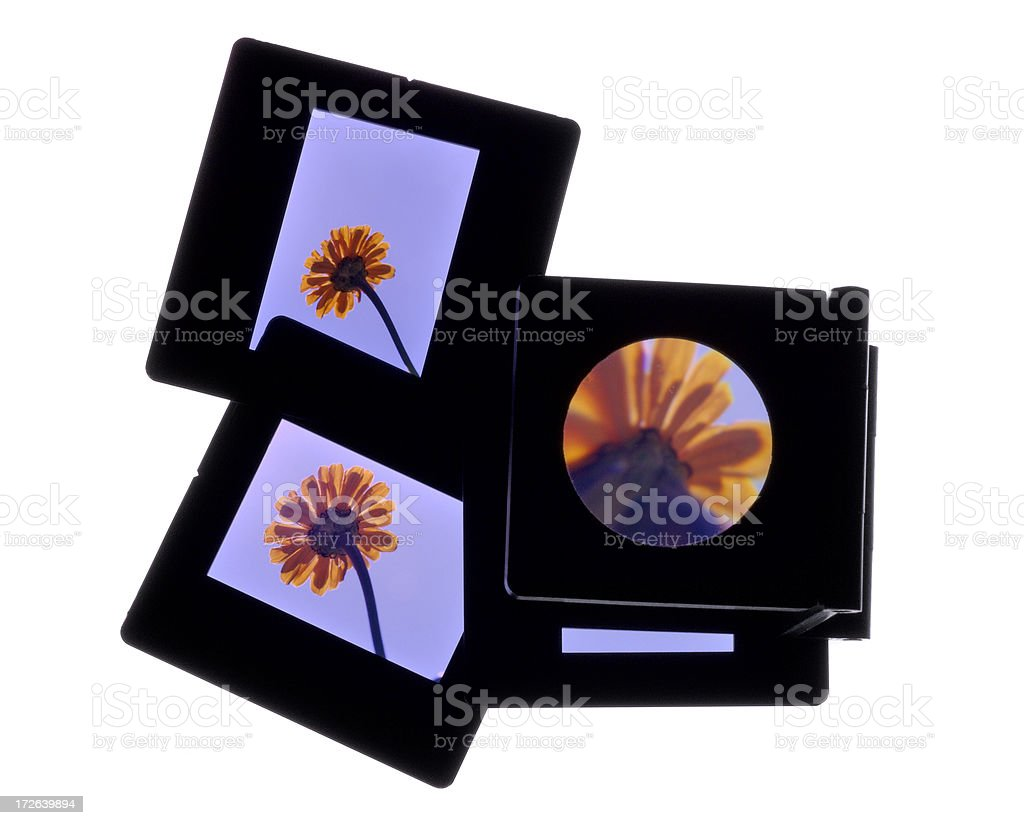 Slides and magnifier royalty-free stock photo