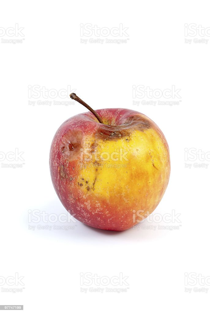 Slightly rotten apple royalty-free stock photo