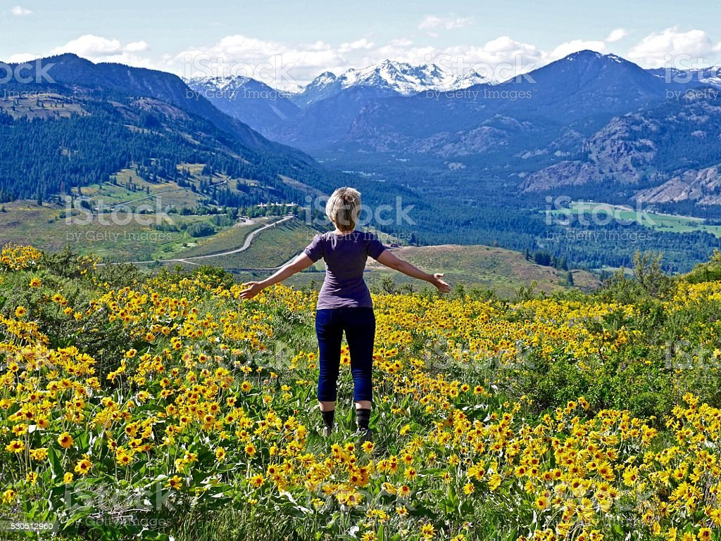 Slim Blond Woman, Yellow Flower, Snow Capped Mountains. stock photo