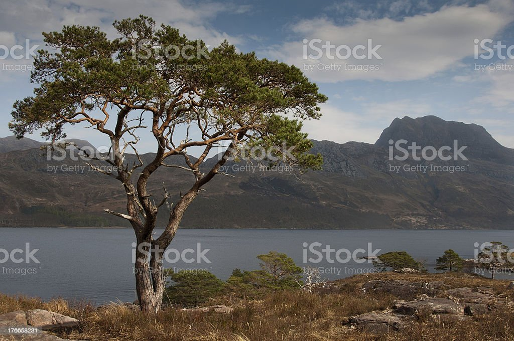 Slioch and Loch Maree stock photo