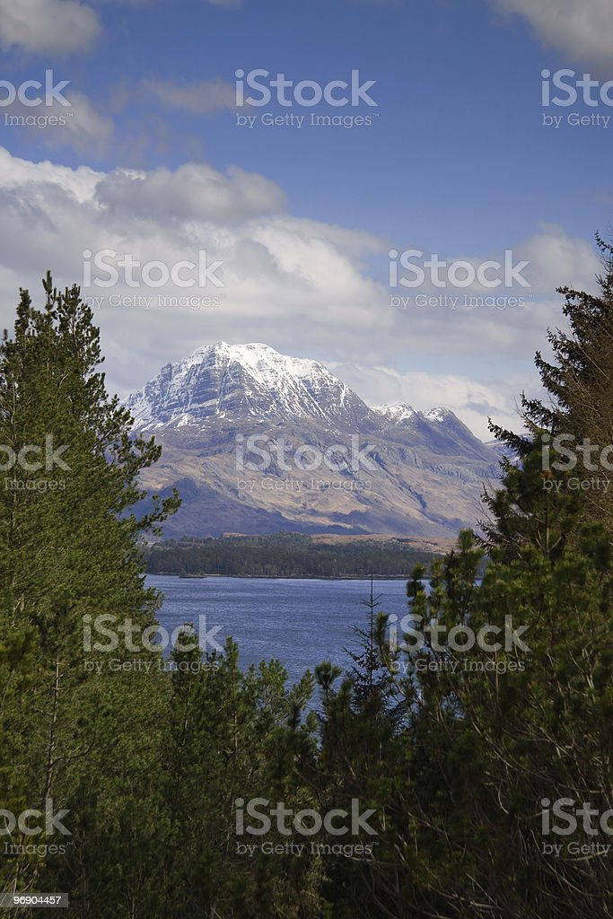 slioch thru trees stock photo