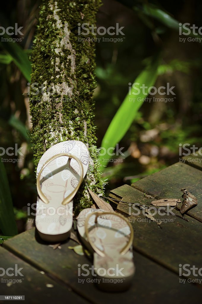 Slippers on Wooden Footbridge royalty-free stock photo