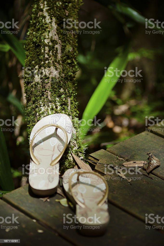 Slippers on Wooden Footbridge stock photo