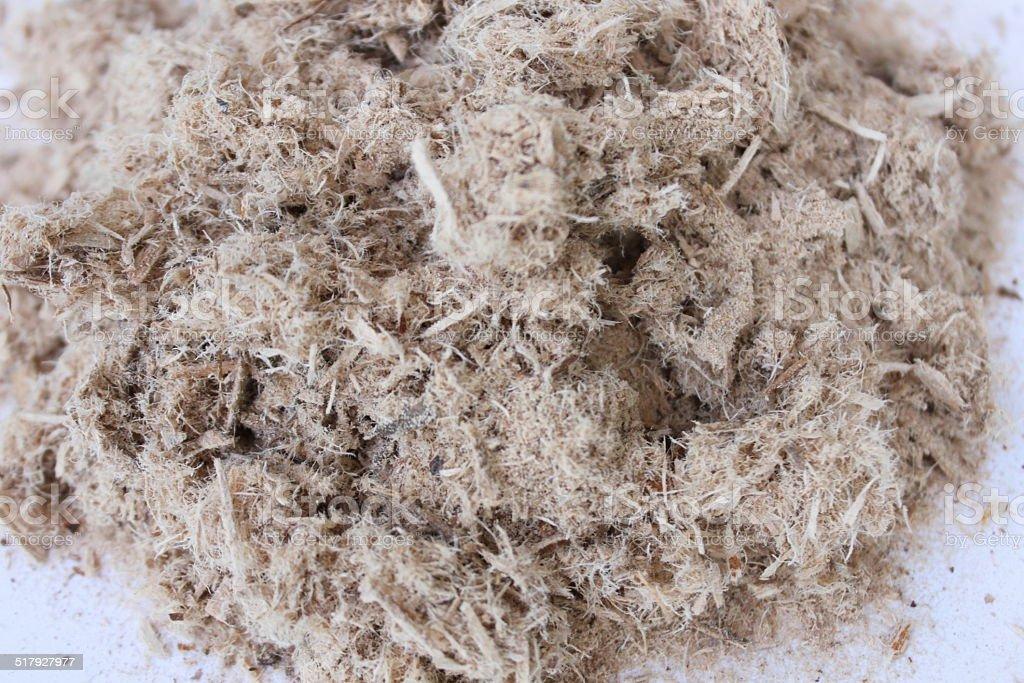 Slippery Elm Bark dried stock photo