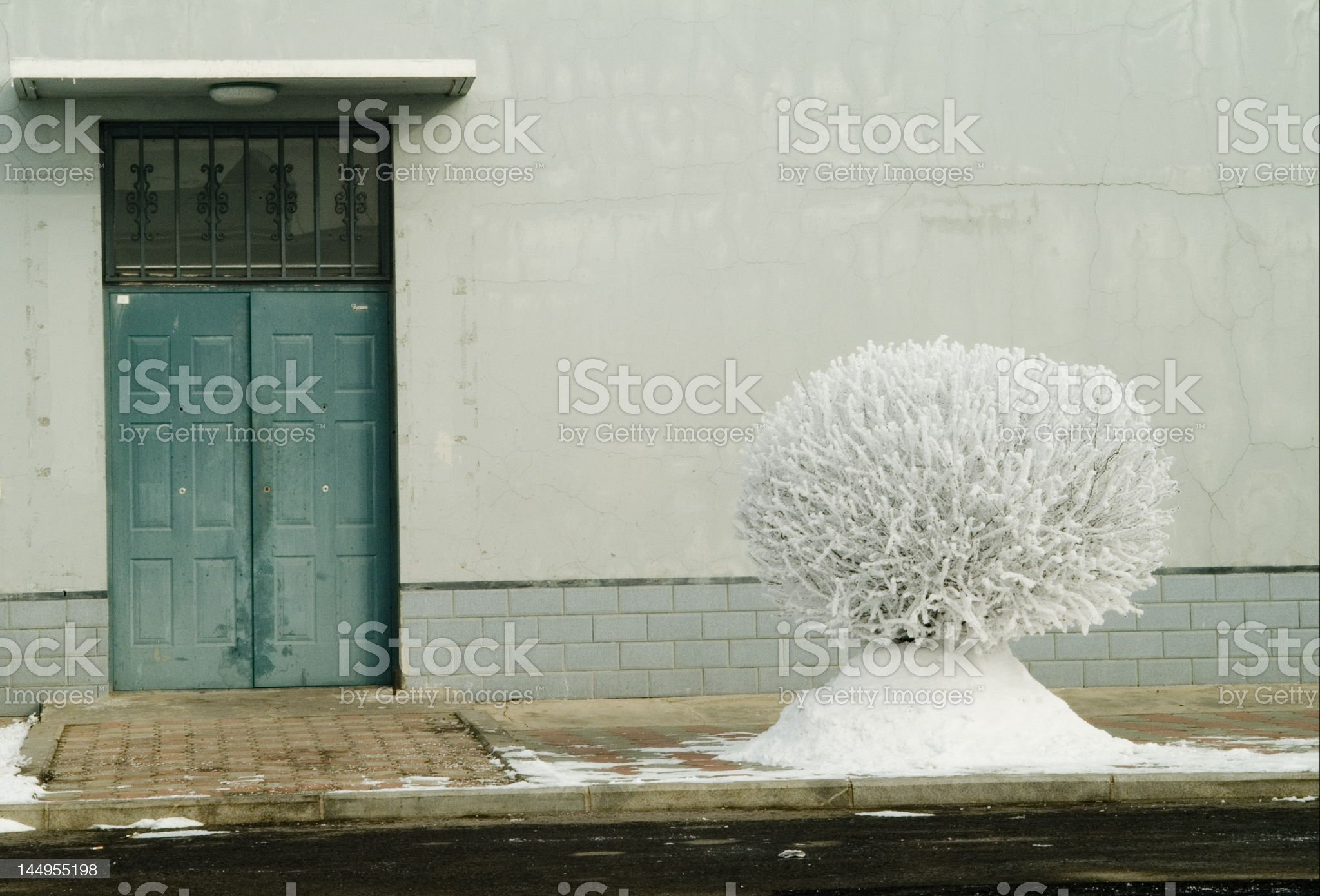 Slippery Elm By The Door royalty-free stock photo