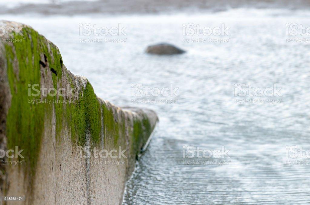 Slipway with seaweed stock photo