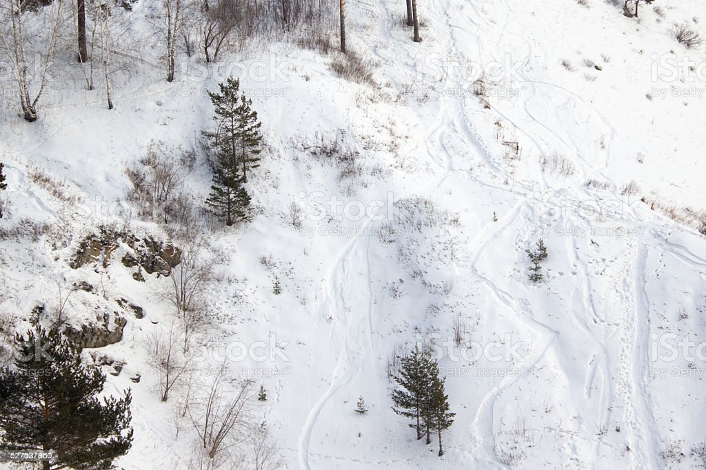 slope in the winter forest with traces of skis stock photo