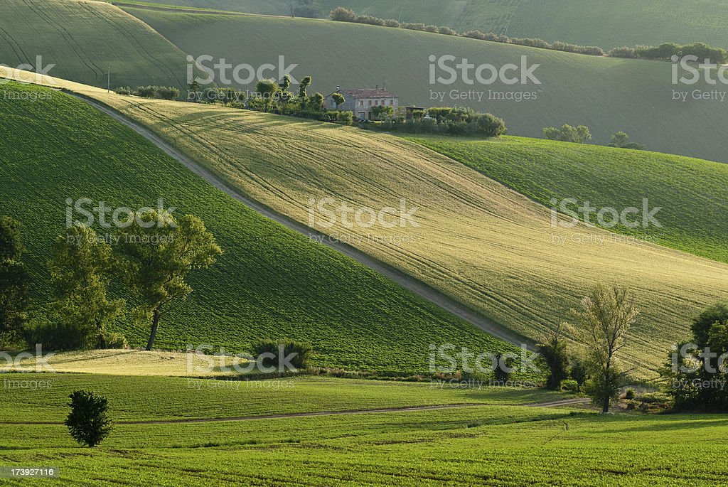 Slopes royalty-free stock photo