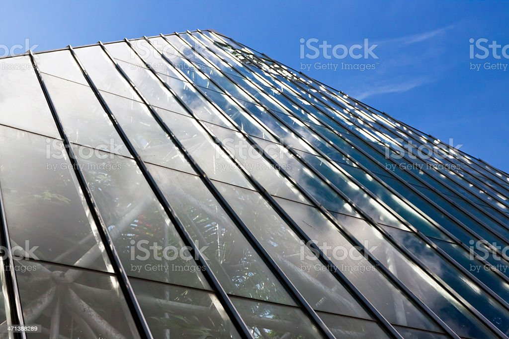 Sloping glass wall of large greenhouse against blue sky stock photo