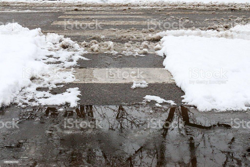 Sloppy Crosswalk and Puddle with Tree Reflection stock photo