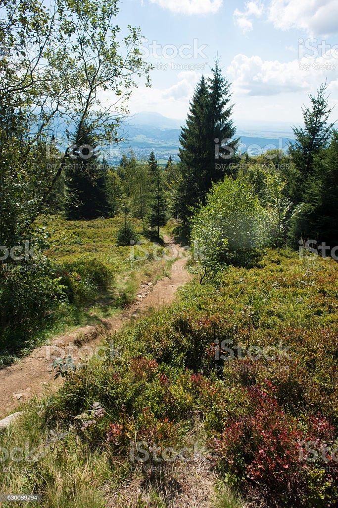 Slovakian mountains - Cheb Mala Fatra stock photo