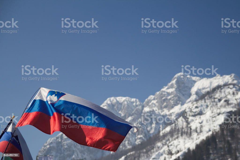 Slovenian flag stock photo