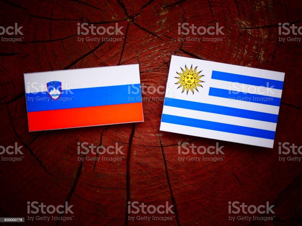 Slovenian flag with Uruguaian flag on a tree stump isolated stock photo