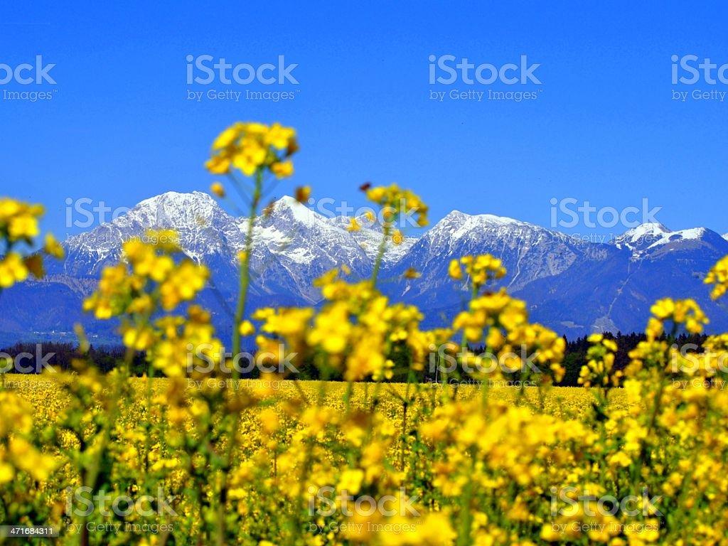 Slovenian mountains stock photo