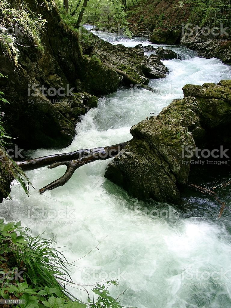 Slovenian river royalty-free stock photo