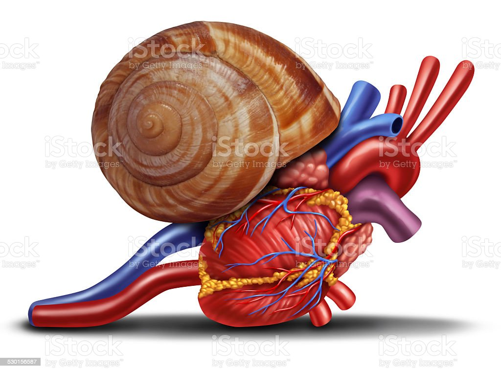 Slow Heart stock photo