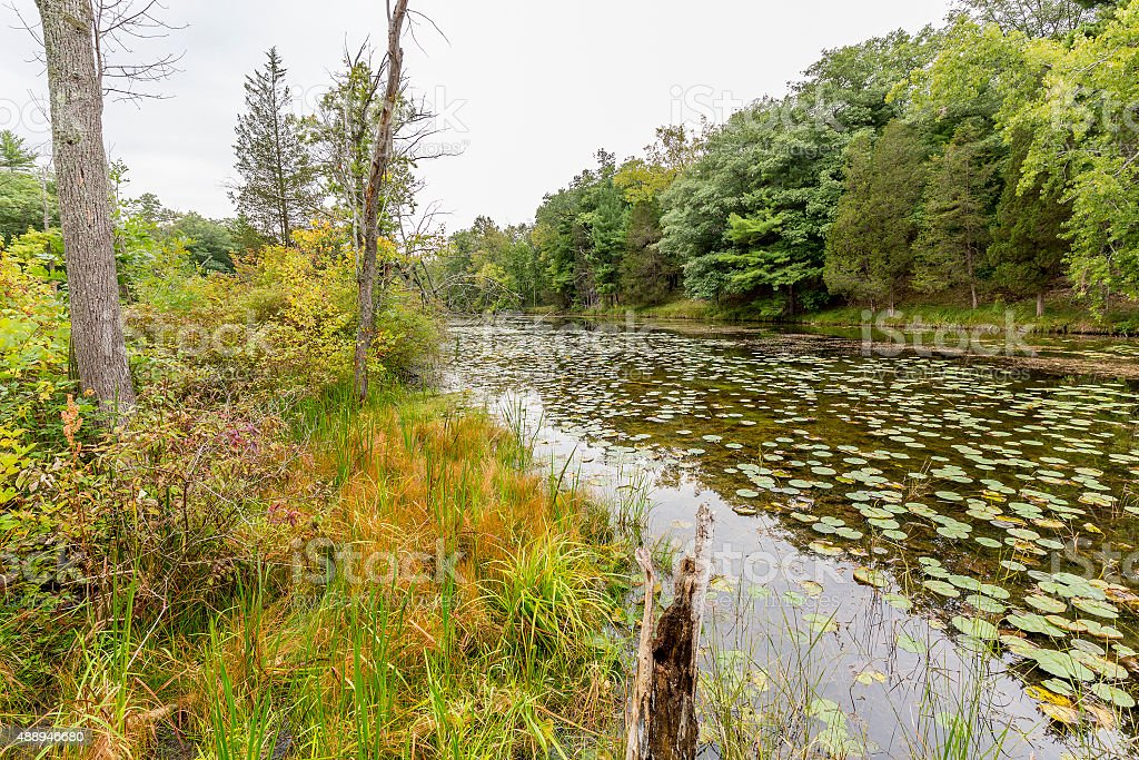 Slow Meandering River Channel in Late Summer - Ontario, Canada stock photo