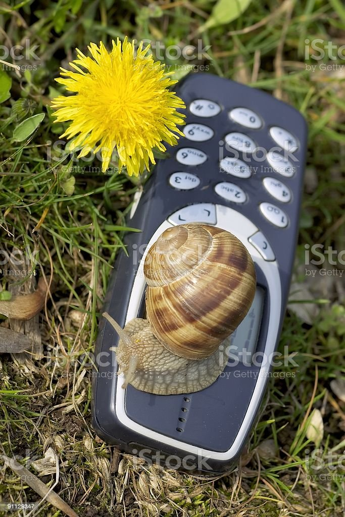 Slow mobile in the nature royalty-free stock photo