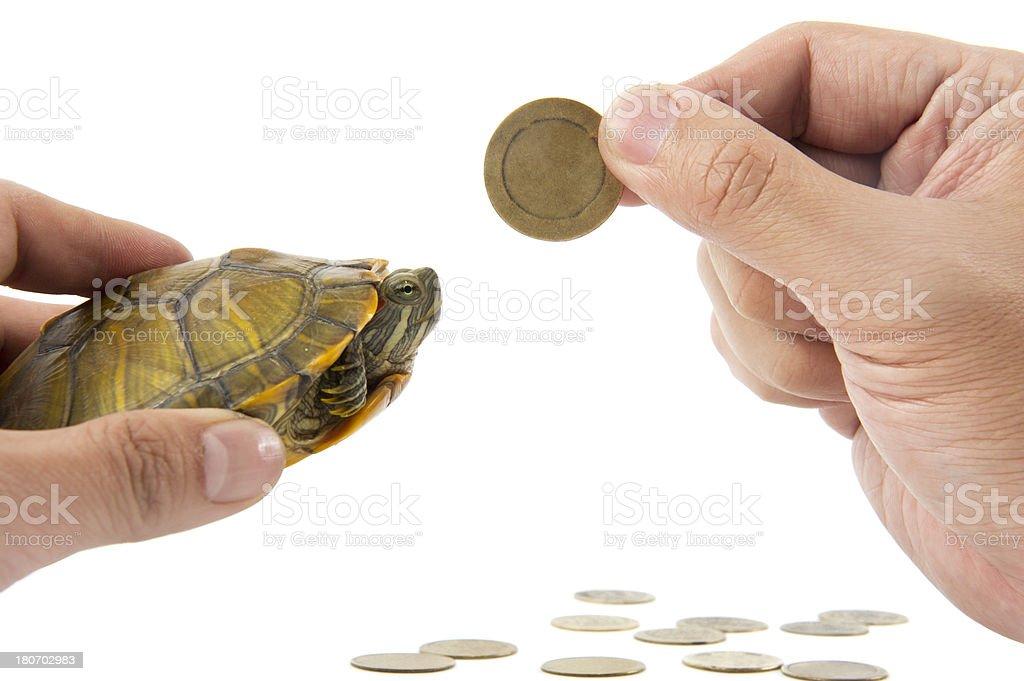 Slow Money royalty-free stock photo