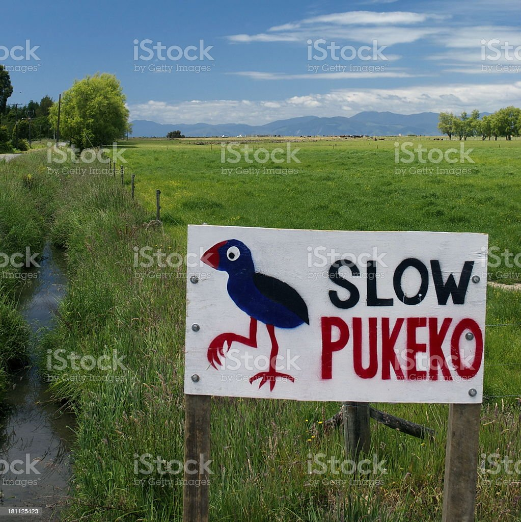 Slow Pukeko Sign and Rural Scene royalty-free stock photo