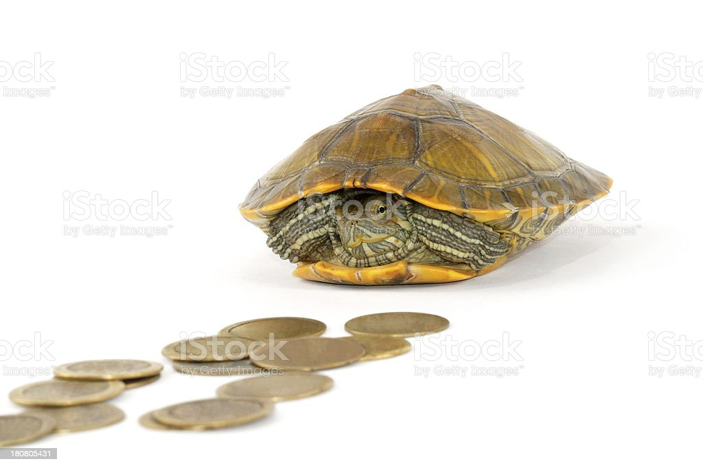 Slow Saving stock photo