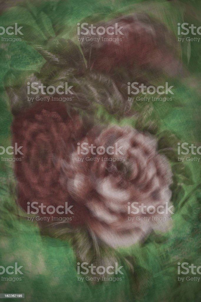 Slow shutter speed on flowers royalty-free stock photo