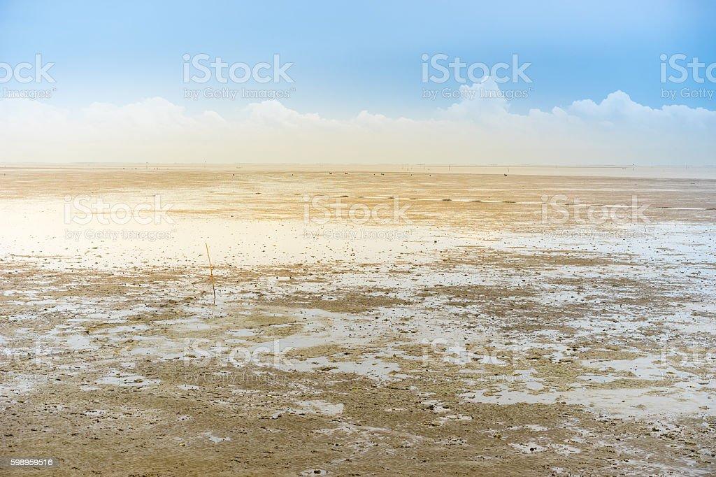 sludge, mire, inland stock photo