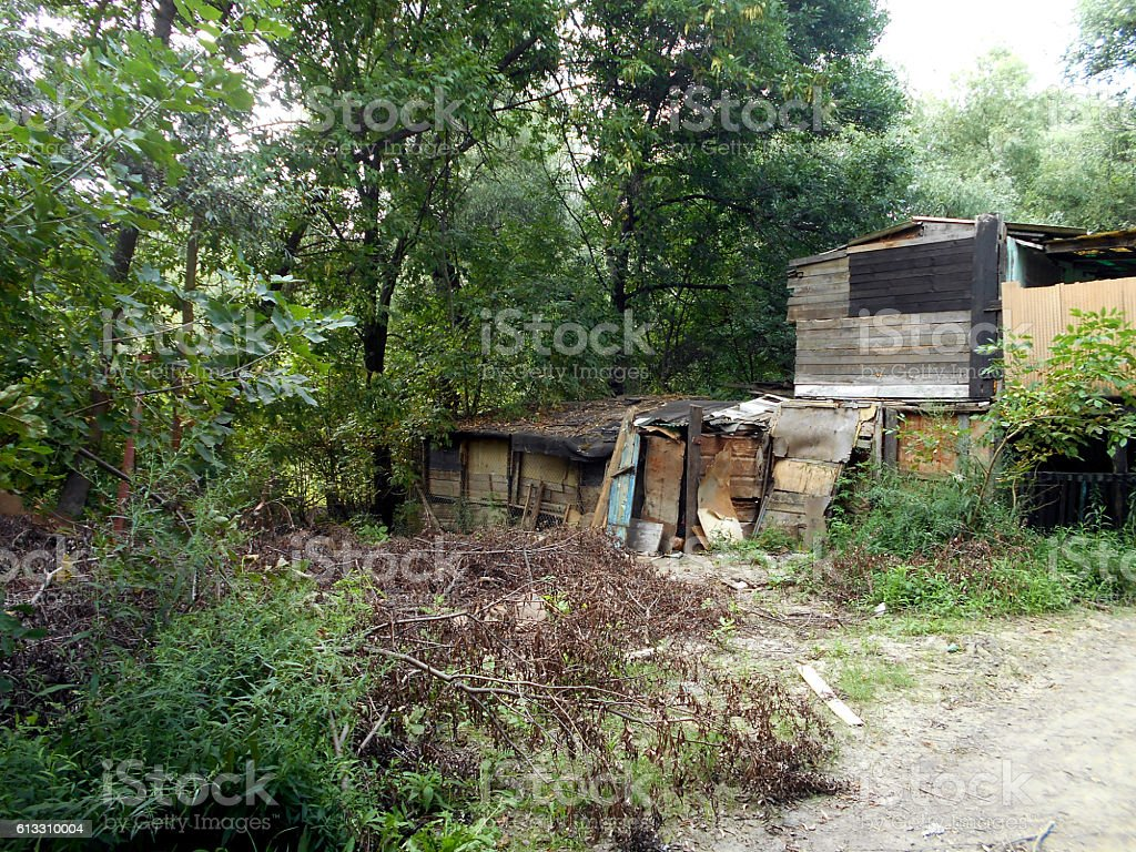 slum on the edge of the forest stock photo