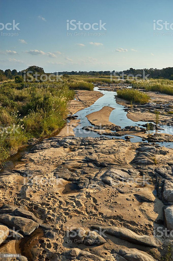 Small African river stock photo