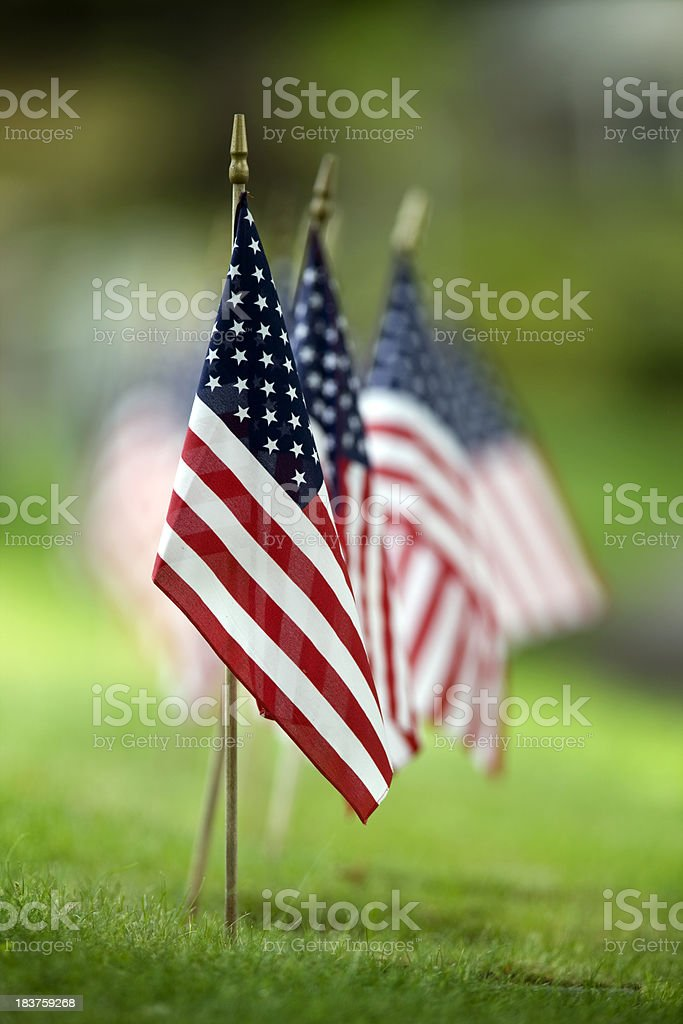 Small American Flags royalty-free stock photo