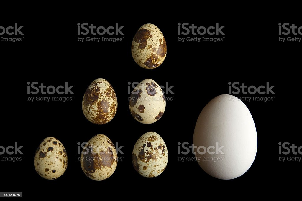 small and big eggs royalty-free stock photo