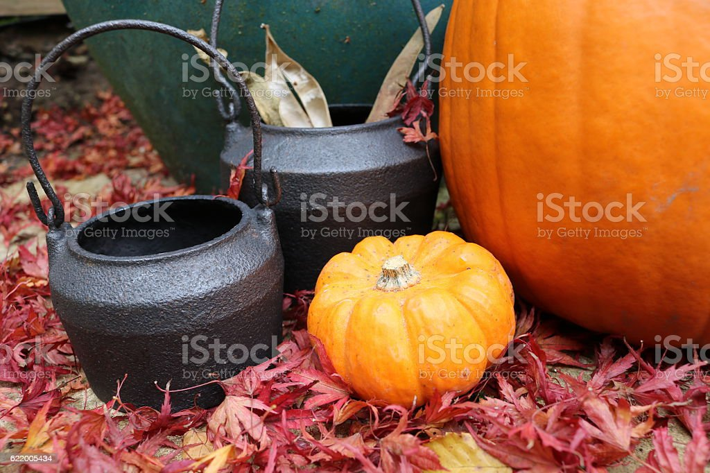 Small and large pumpkins next to cauldrons in red leaves stock photo