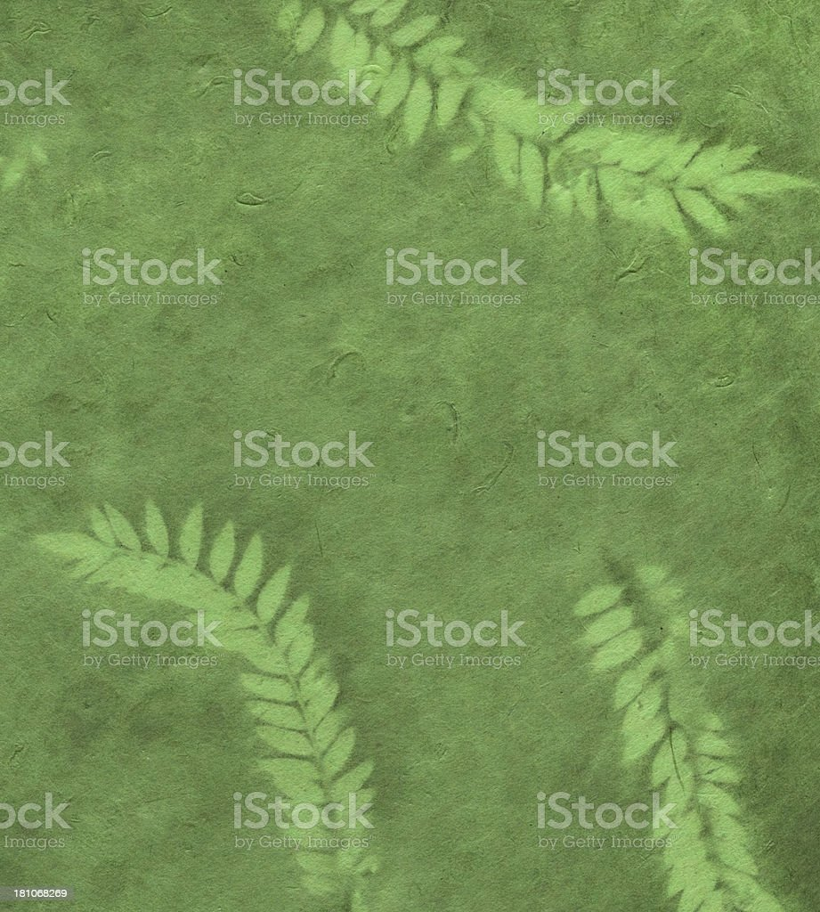 small batch green paper with fern leafs royalty-free stock photo