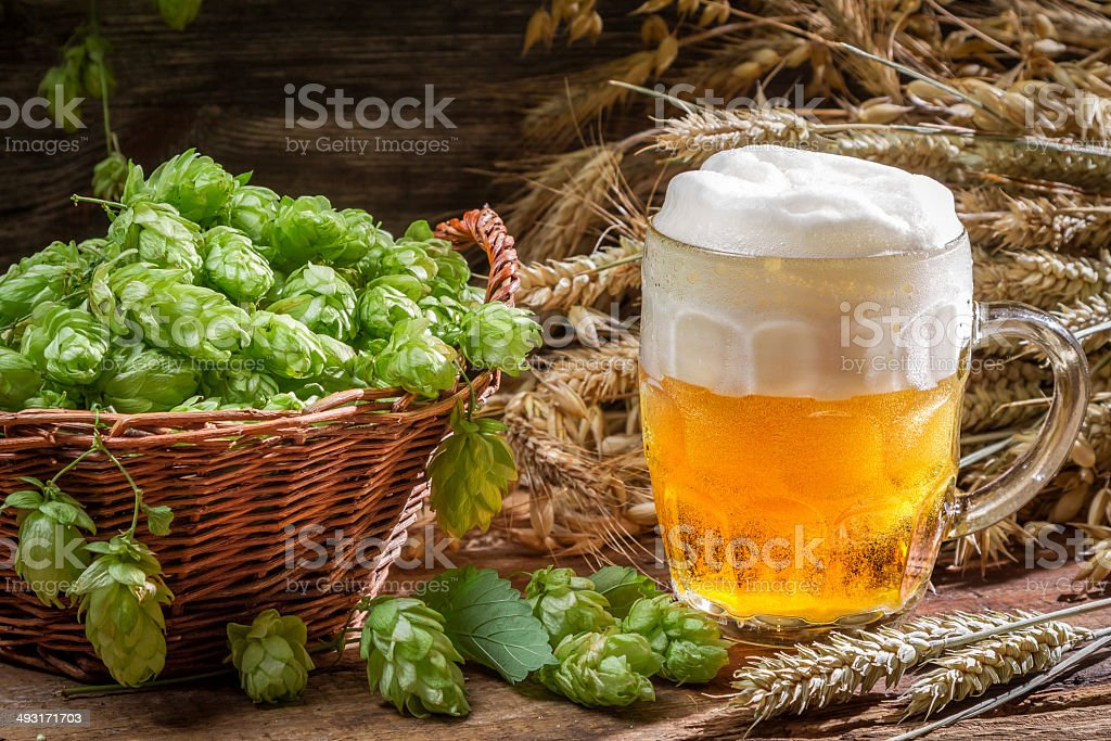 Small beer with a large foam surrounded by hops stock photo