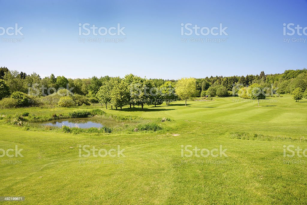Small blue lake in lush green meadow royalty-free stock photo
