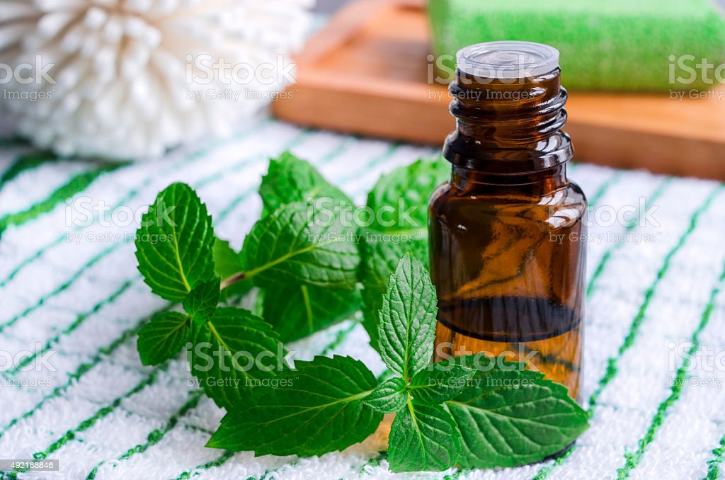 Small bottle of essential mint oil stock photo