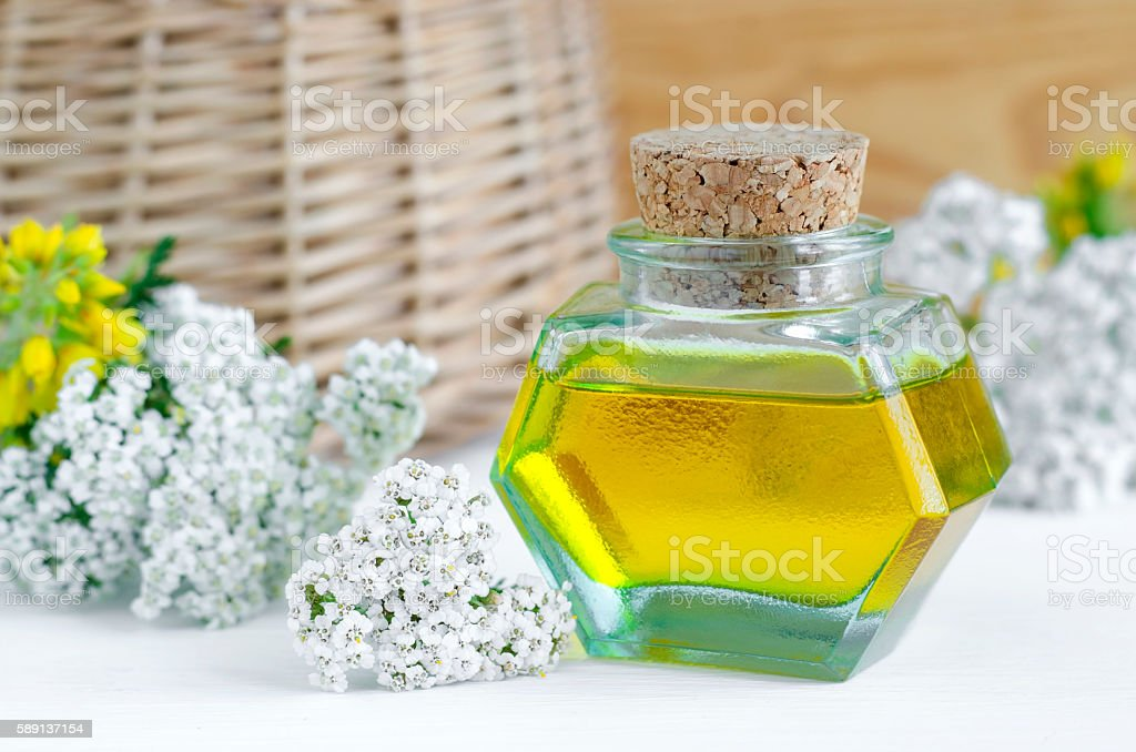 Small bottle of yarrow oil (extract, tincture, infusion) stock photo