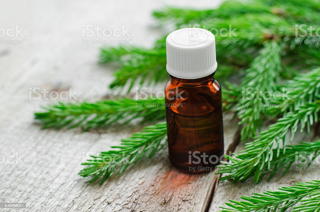 Small bottles of essential spruce (fir) oil stock photo