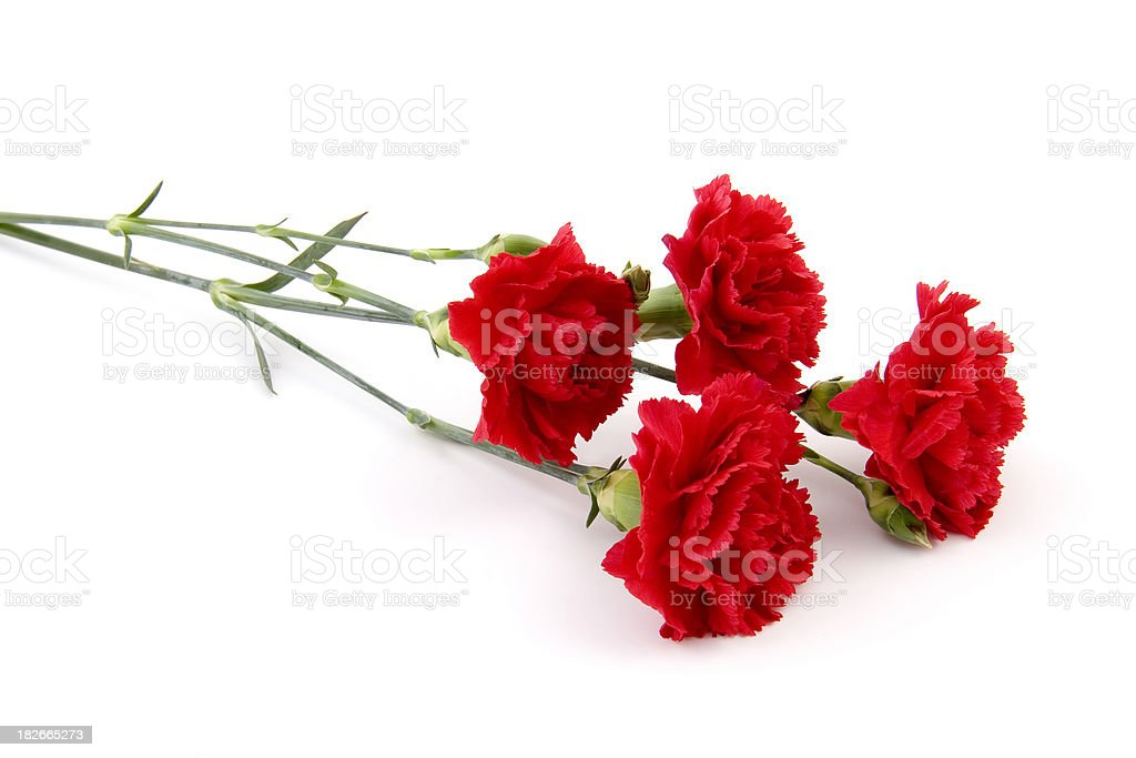 Small Bouquet stock photo