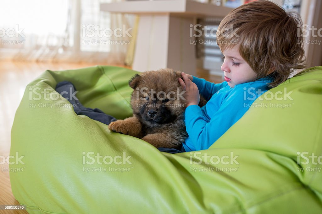 Small boy in bean bag cuddling his puppy. stock photo