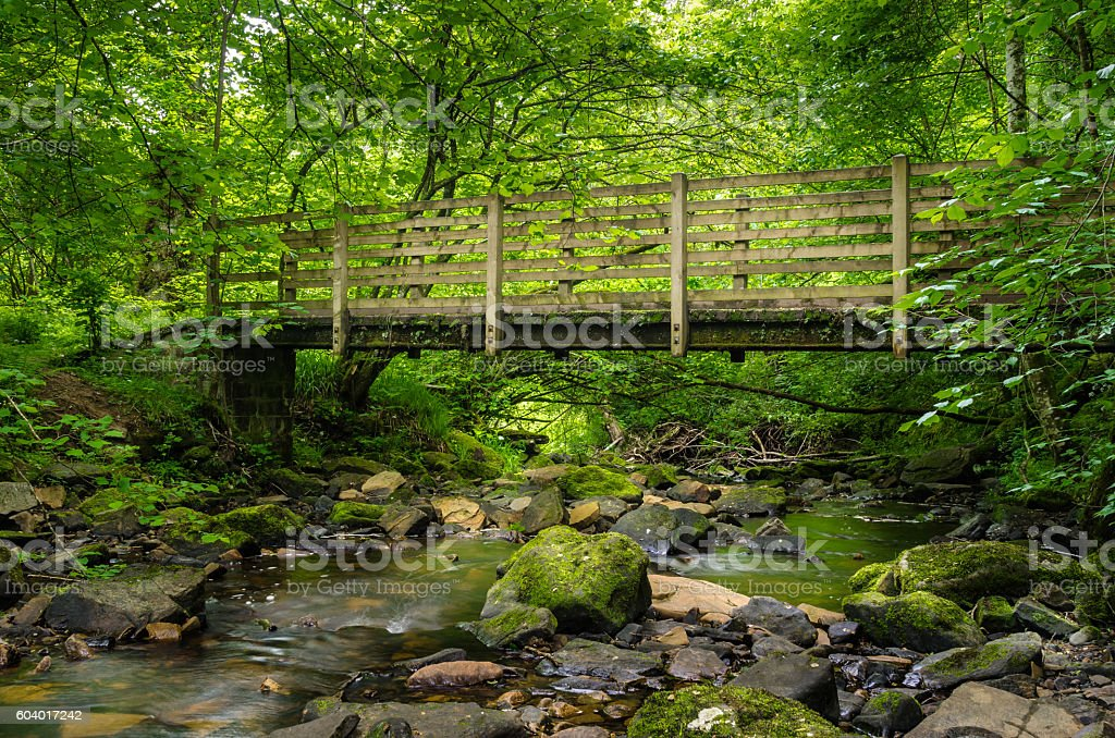 Small Bridge over a Mountain Stream stock photo